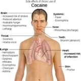 Images of Signs Of A Cocaine Addiction